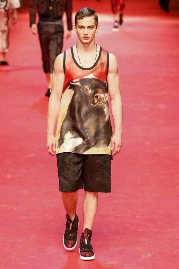 Raging bull print, Dolce & Gabbana