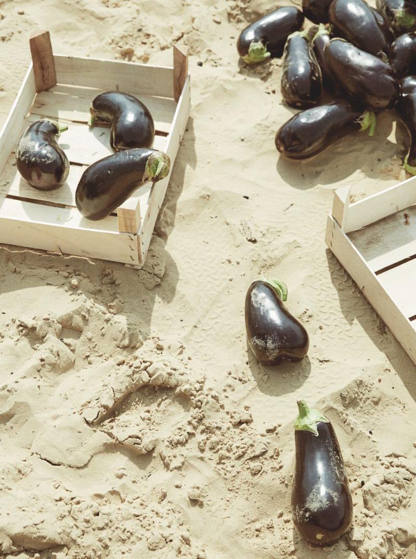 Schmuck Auberginen Sand