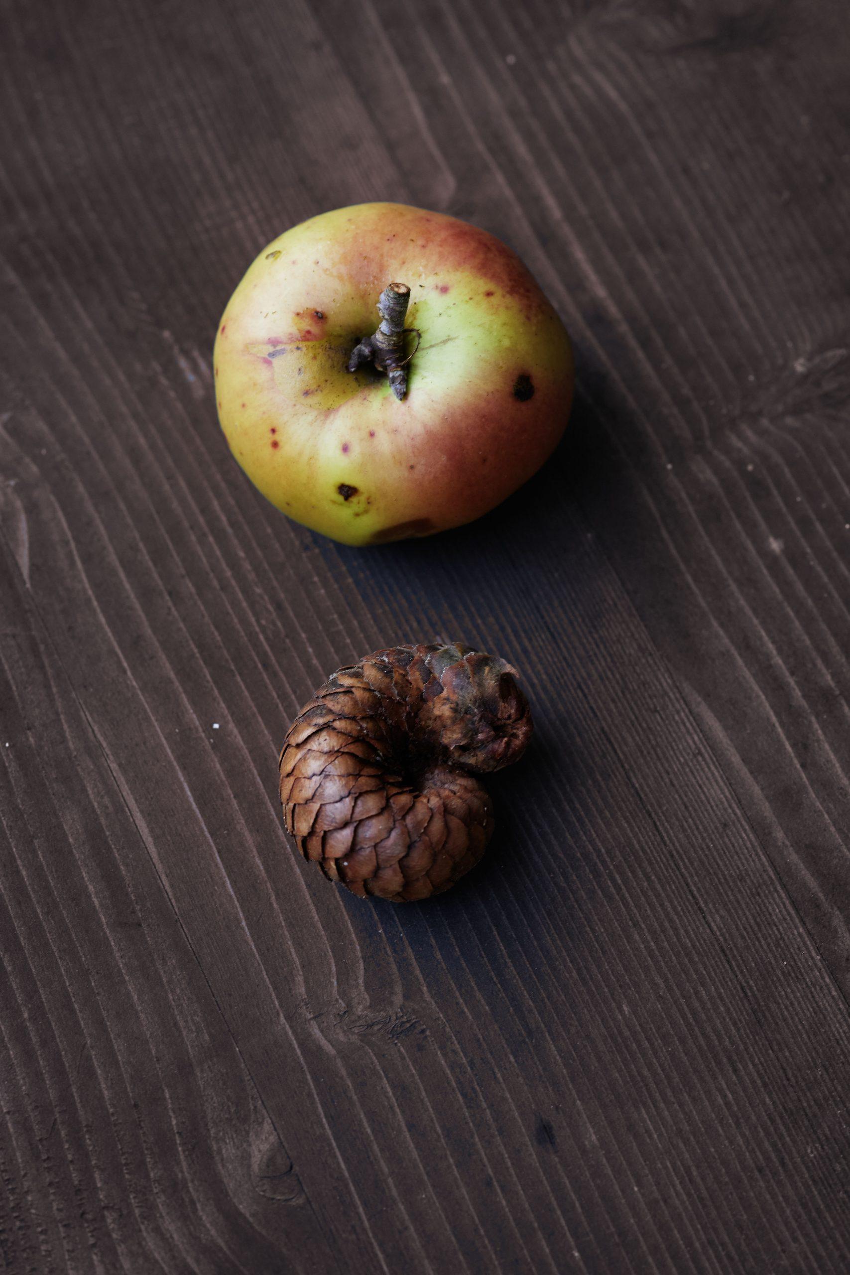 Apfel und Zapfen